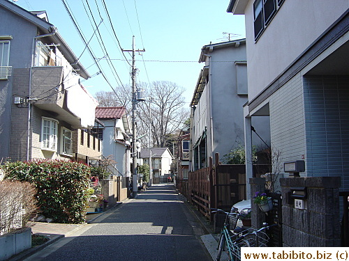 A typical street in a residential area